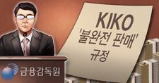 금감원, '4개 기업+α' 키코 분쟁조정안 마련한다
